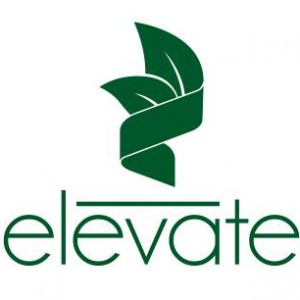 Elevate Matcha Green Tea Natural Healthy Energy