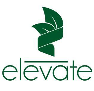 Elevate Matcha Green Tea Natural Healthy Energy