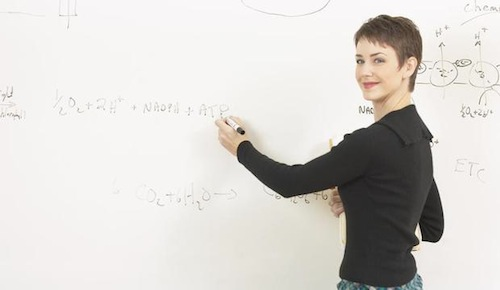 San Fernando Valley Tutoring Math Program